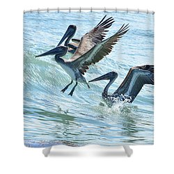 Wave Hopping Pelicans Shower Curtain