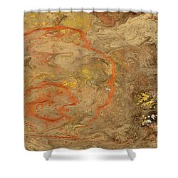 Wet Riverbed Shower Curtain