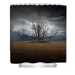 When Dreams Become Reality Shower Curtain