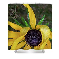 Shower Curtain featuring the photograph When Nature Gives The Finger by Dale Kincaid