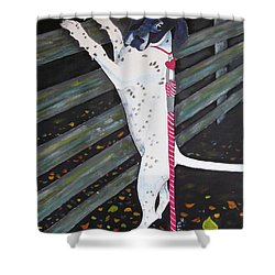 Where Did It Go? Shower Curtain