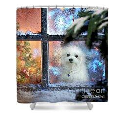 Where Is Santa ? Shower Curtain