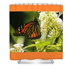White Flowers W12 Shower Curtain
