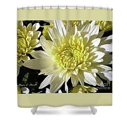 White Flowers W8 Shower Curtain