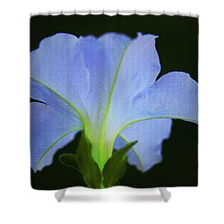 White Petunia Shower Curtain