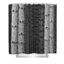 White Pines Black And White Shower Curtain