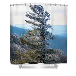 Wind Shaped Shower Curtain