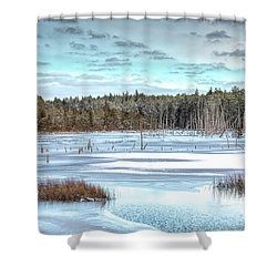 Winter At Lake Oswego Shower Curtain