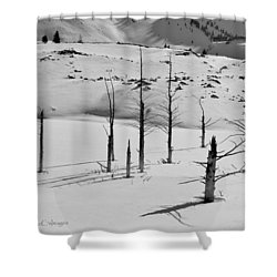 Winter At Quake Lake Shower Curtain
