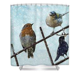 Winter Birds Shower Curtain