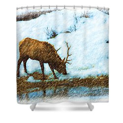 Winter Elk By River Shower Curtain