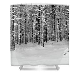 winter forest, Harz Shower Curtain