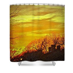 Winter Amber Shower Curtain