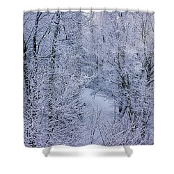 Winter Ice Storm Shower Curtain
