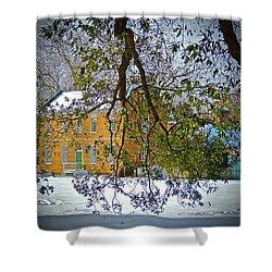 Winter Green Shower Curtain