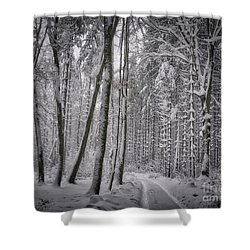 Shower Curtain featuring the photograph Wintry Forest Track by Edmund Nagele