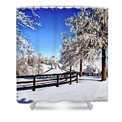 Wintry Lane Shower Curtain