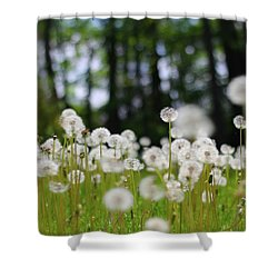 Wishes And Dreams Shower Curtain