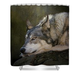 Wolf Watch Shower Curtain
