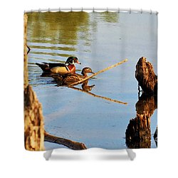 Shower Curtain featuring the photograph Wood Ducks by Debbie Stahre