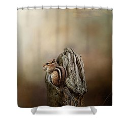 Woodland Visitor Shower Curtain
