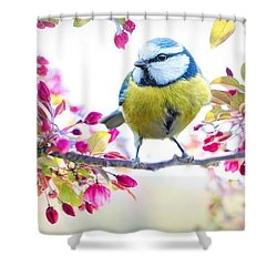 Yellow Blue Bird With Flowers Shower Curtain