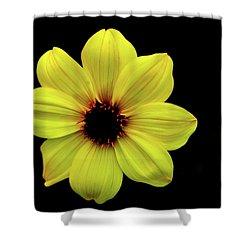 Yellow Dahlia Shower Curtain