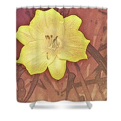 Yellow Day Lily Stencil On Sandstone Shower Curtain