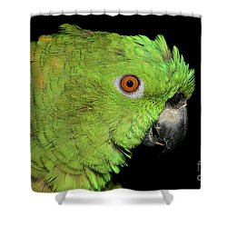 Shower Curtain featuring the photograph Yellow-naped Amazon by Debbie Stahre