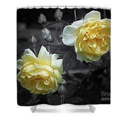 Yellow Roses Partial Color Shower Curtain