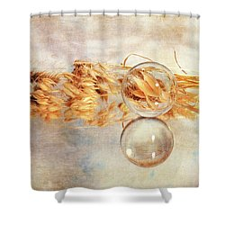 Shower Curtain featuring the photograph Yesterday's Seeds by Randi Grace Nilsberg