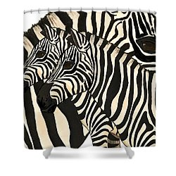 Z Is For Zebras Shower Curtain