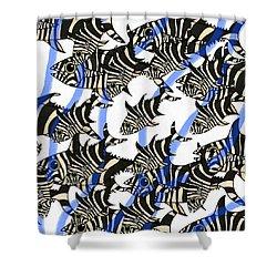 Zebra Fish 8 Shower Curtain
