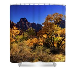 Shower Curtain featuring the photograph Zions Beauty by Tassanee Angiolillo