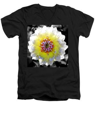 Colorwheel Men's V-Neck T-Shirt