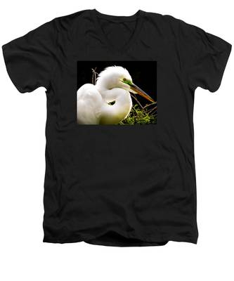 Essence Of Beauty Men's V-Neck T-Shirt