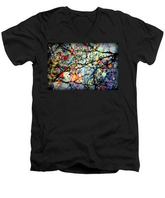 Natures Stained Glass Men's V-Neck T-Shirt