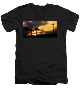 Night Fury Men's V-Neck T-Shirt