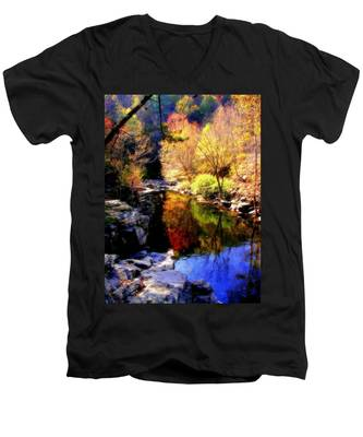 Splendor Of Autumn Men's V-Neck T-Shirt