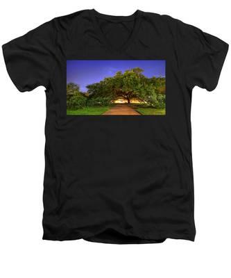 The Century Tree Men's V-Neck T-Shirt