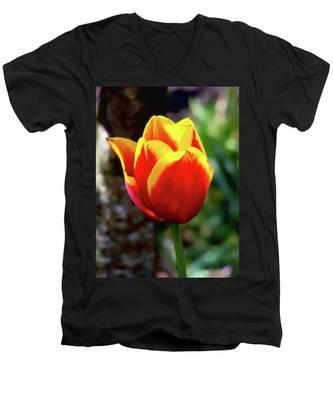 Tulip Men's V-Neck T-Shirt