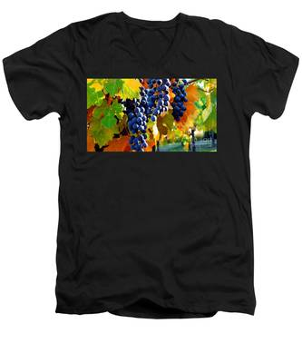 Vineyard 2 Men's V-Neck T-Shirt