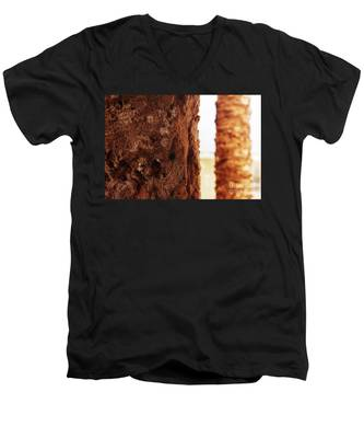 Palm And Wall 2 Men's V-Neck T-Shirt