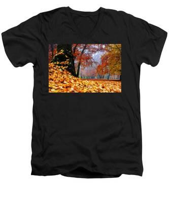 Autumn In The Woodland Men's V-Neck T-Shirt