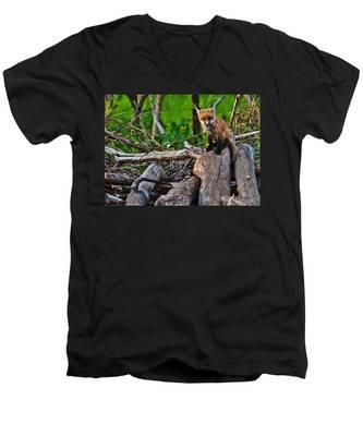 Baby Fox Men's V-Neck T-Shirt