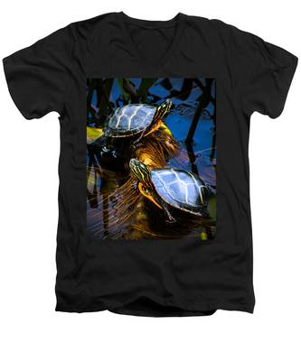 Passing The Day With A Friend Men's V-Neck T-Shirt