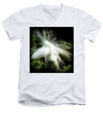 Elegance Of Creation Men's V-Neck T-Shirt