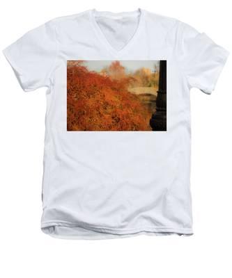 Autumn Maple Men's V-Neck T-Shirt