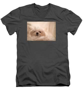 Fresh From A Long Winter's Nap Men's V-Neck T-Shirt