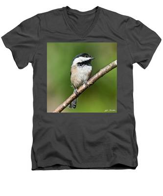 Black Capped Chickadee Men's V-Neck T-Shirt